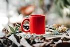 Золотые правила заваривания чая