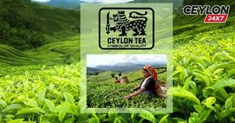 Знак качества цейлонского чая - читайте в нашем блоге