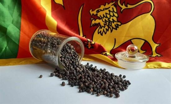 Ceylon black pepper photo