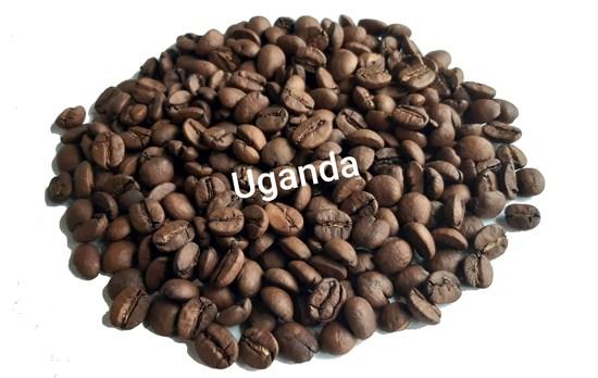 Кофе в зернах Уганда фото